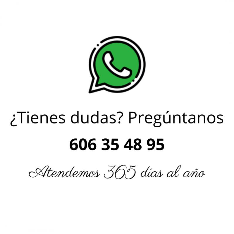 Whatsapp Postura Ranita Portabebés